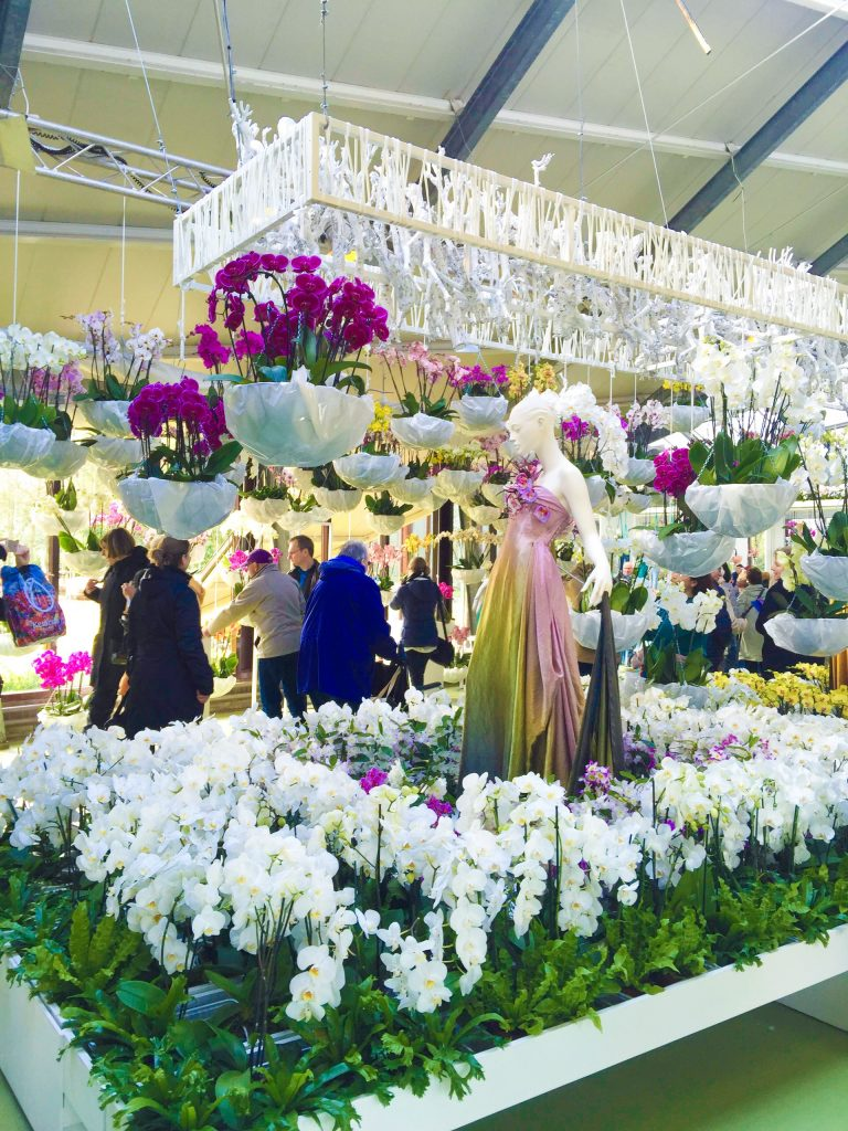 Orchids exhibit and the Princess