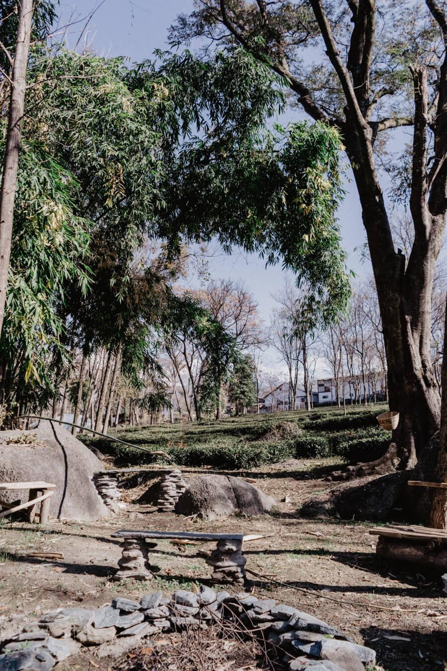 The bonfire for the WAH Tea Estate Picnic spot