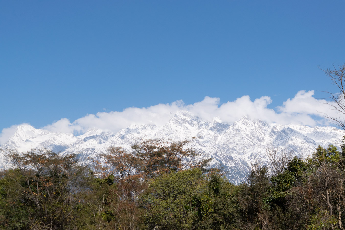 The Dhauladhar ranges