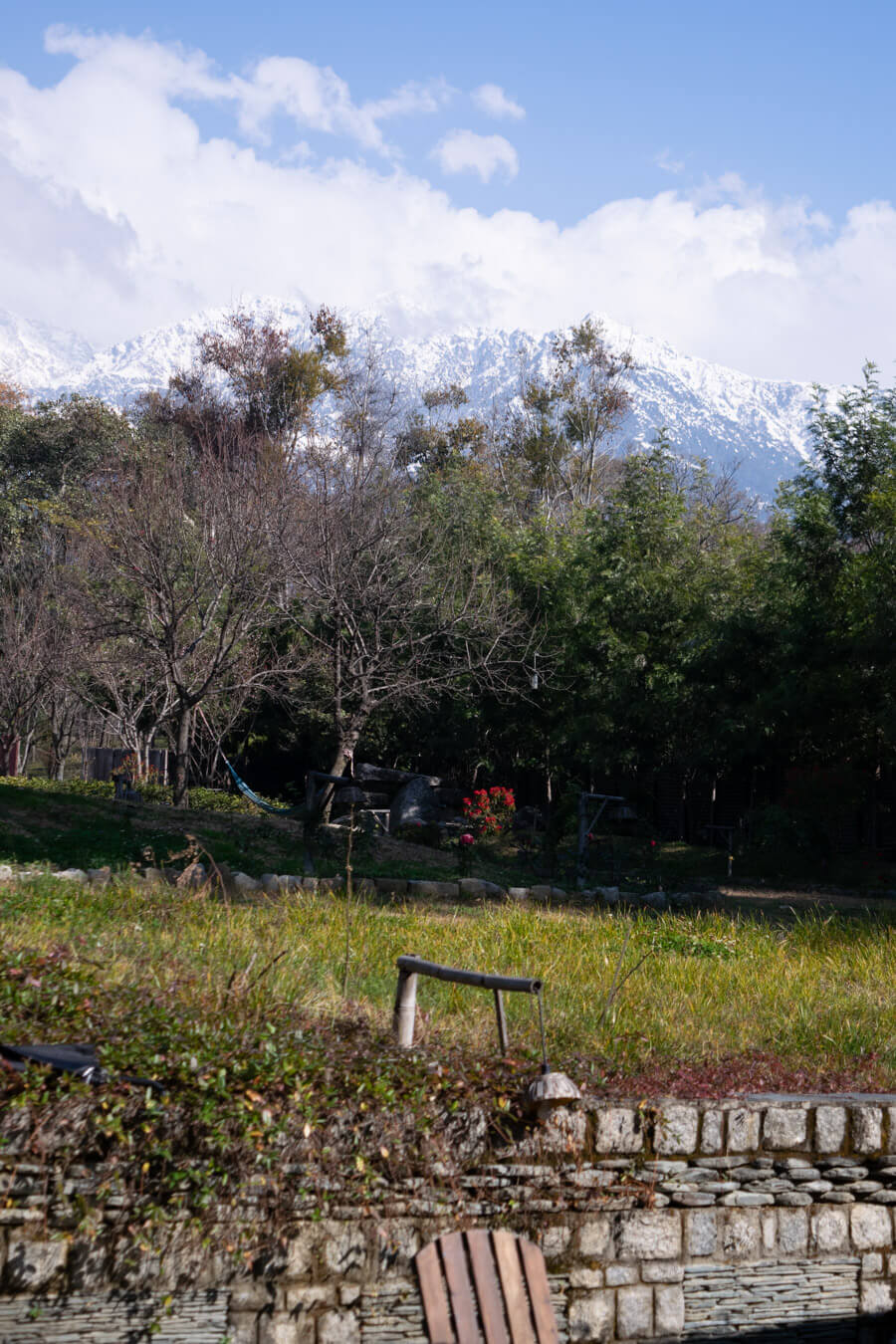 The Lodge garden and the Dhauladhar range