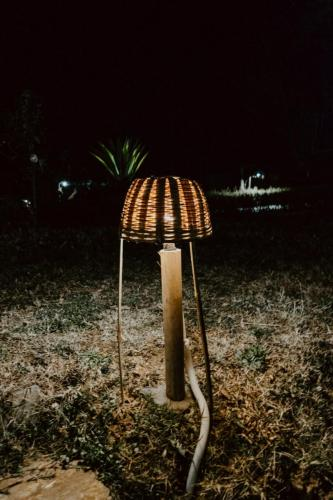 re-cycled and eco-friendly light cane light hood