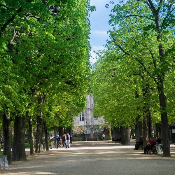 Jardin du luxembourg; Parks
