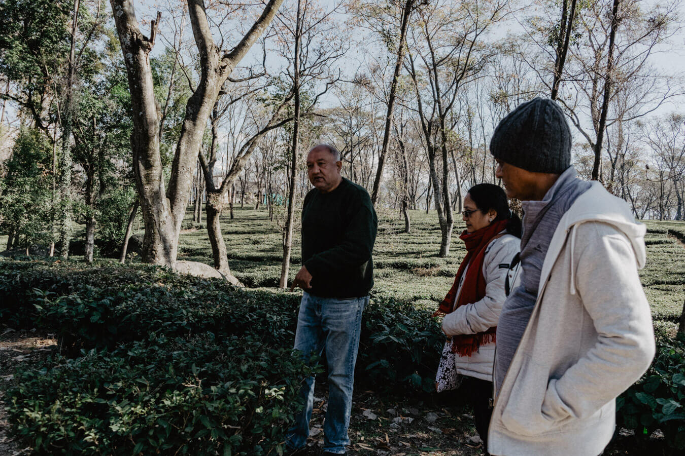Getting to know the WAH tea Estate history.