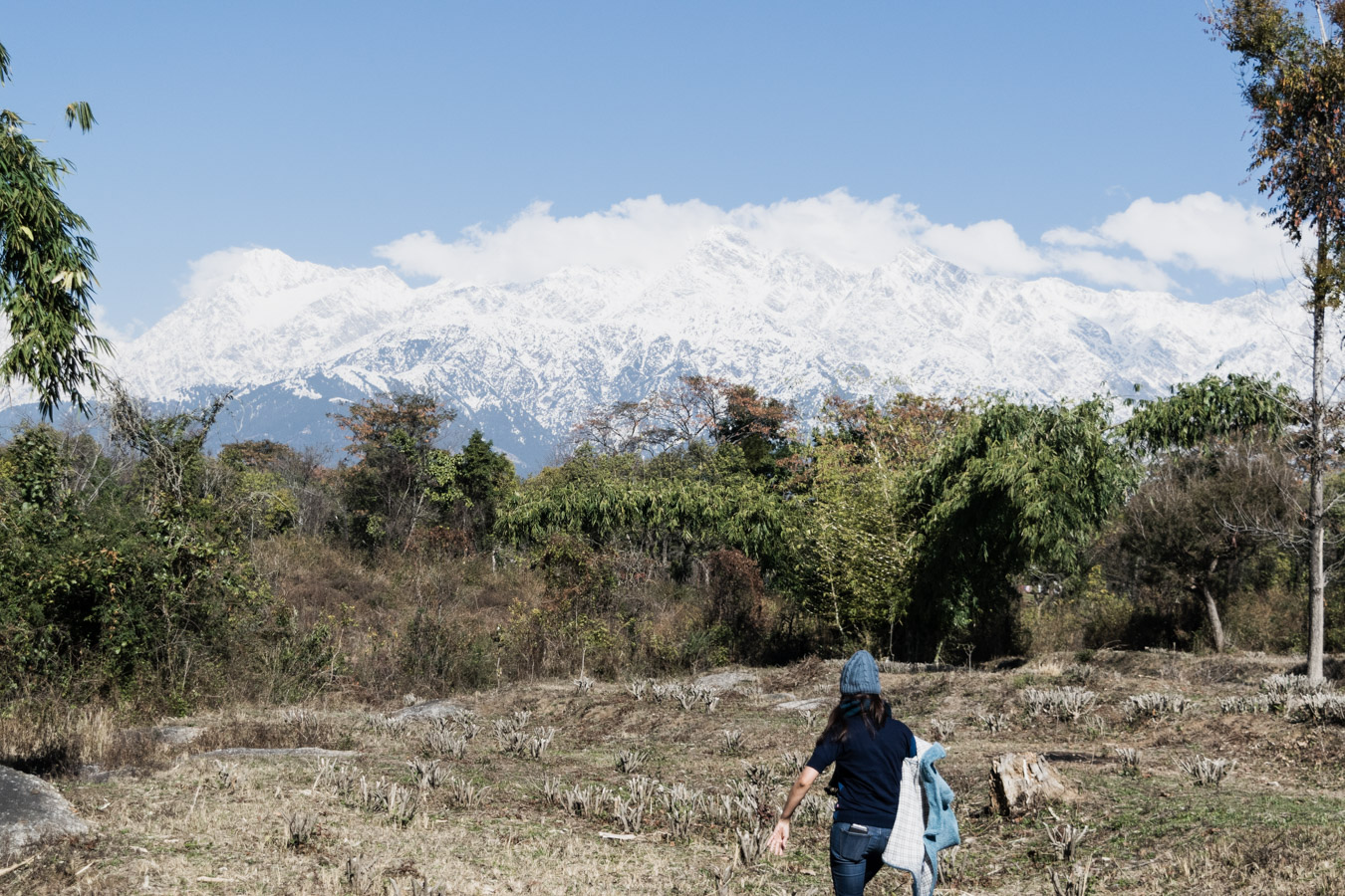 The Dhauladhar ranges - and yours truly